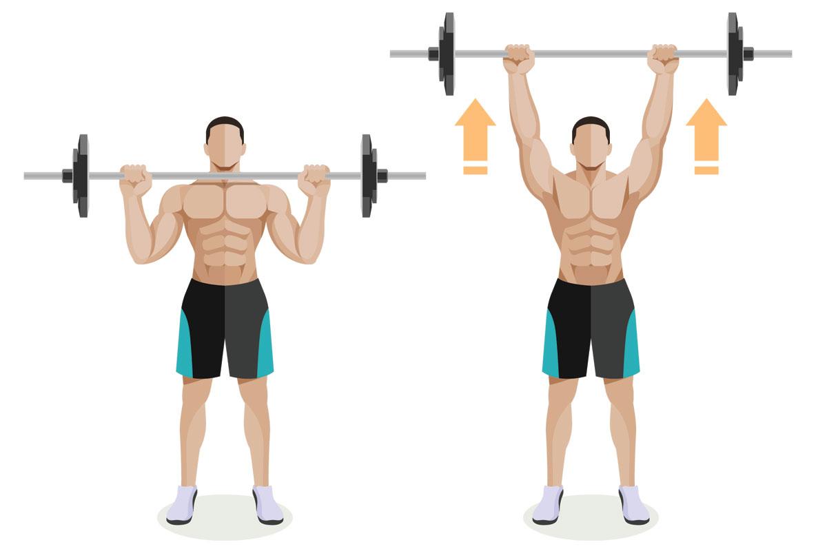 Базовое упражнение на плечи