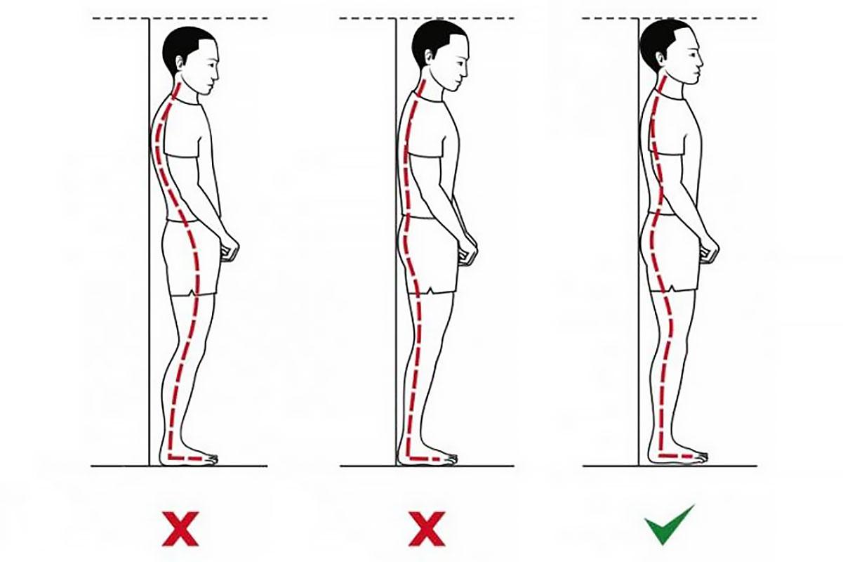 Как увеличить рост — выпрямление спины