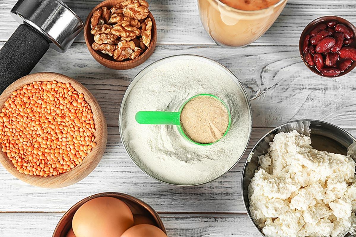 Где содержится белок?