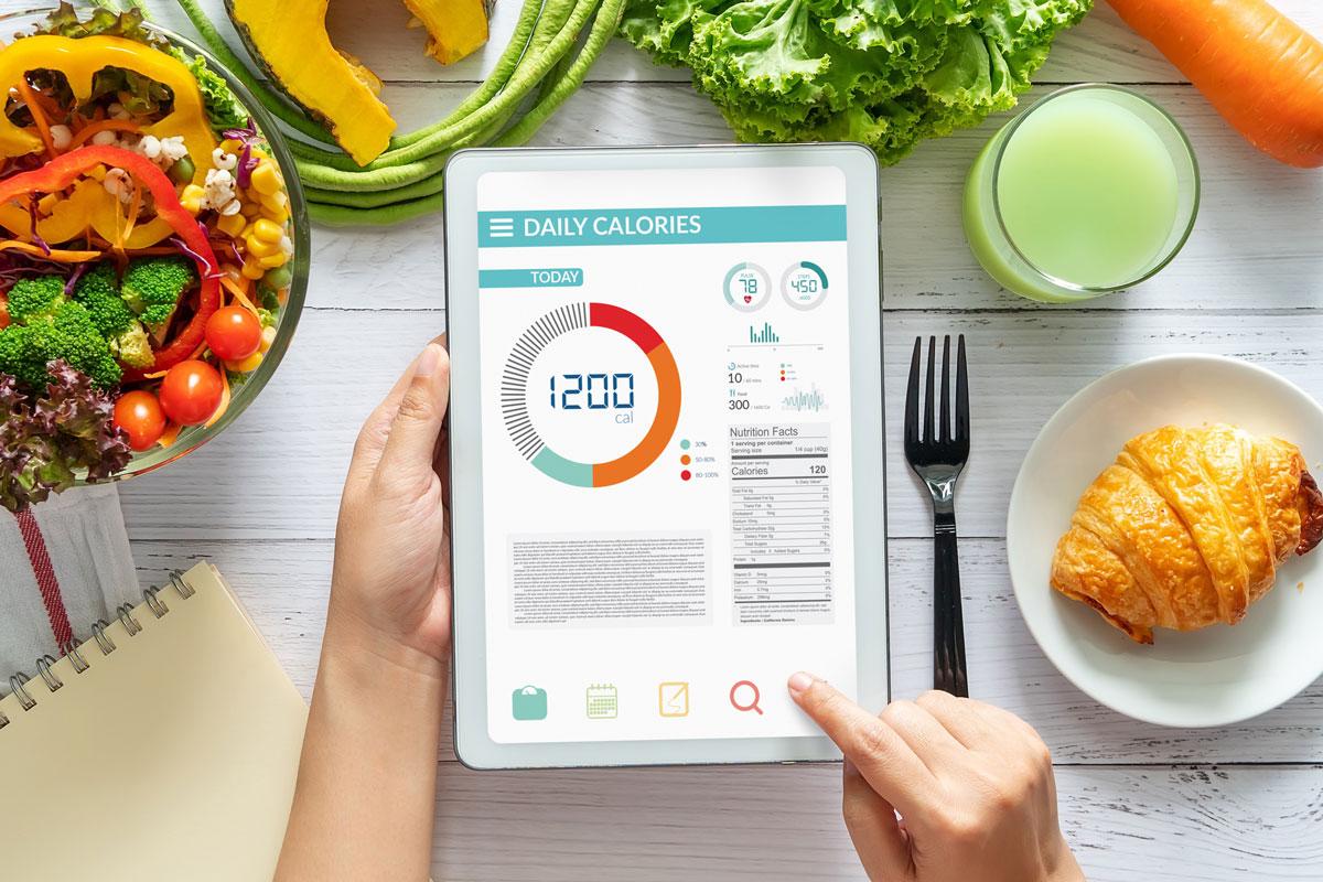 программа расчета калорий для похудения