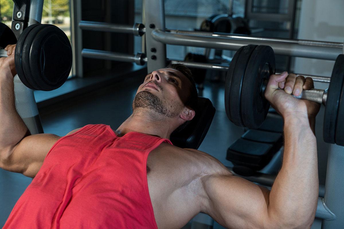 Программа тренировок на грудь с гантелями