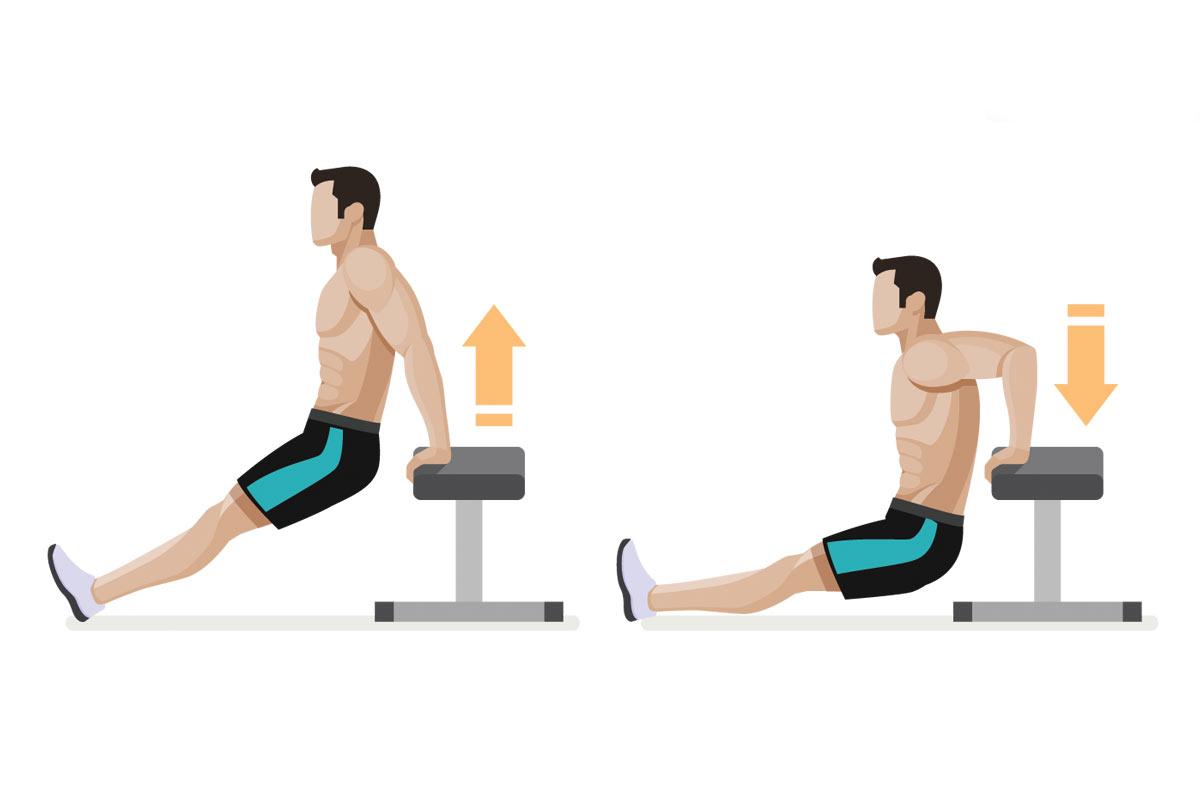 Упражнения на трицепс —обратные отжимания