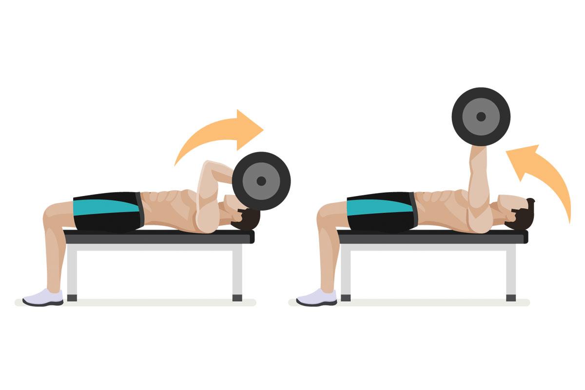 Упражнения на трицепс —французский жим