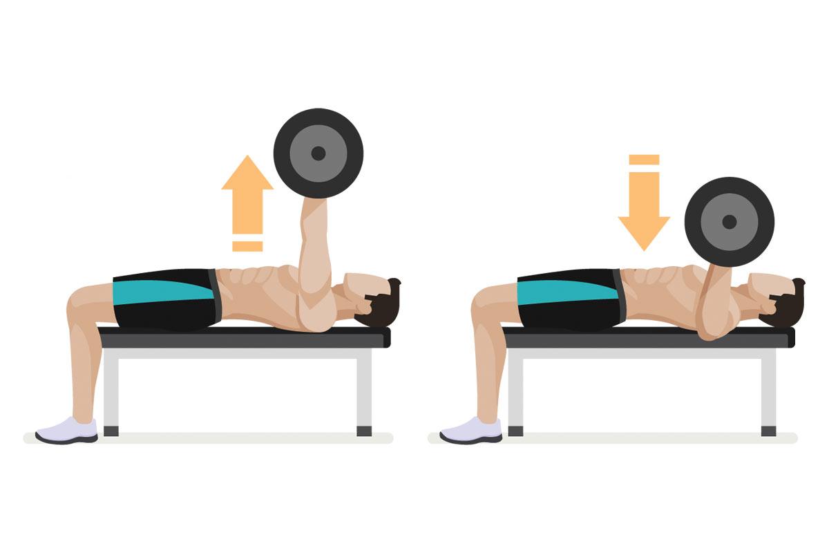 Упражнения на трицепс —жим лежа узким хватом