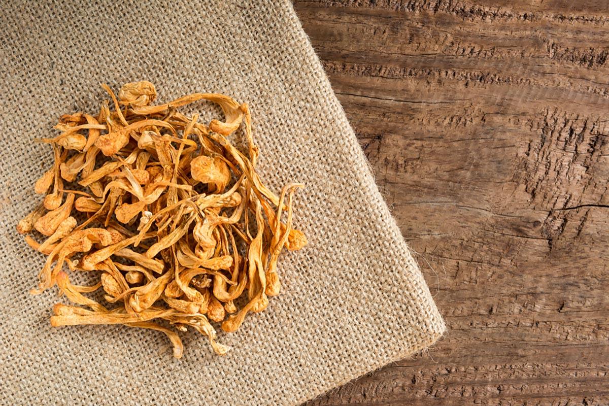 Растворимая клетчатка —сушеные грибы