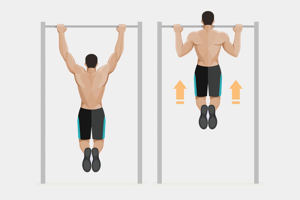 Упражнения на спину —подтягивания