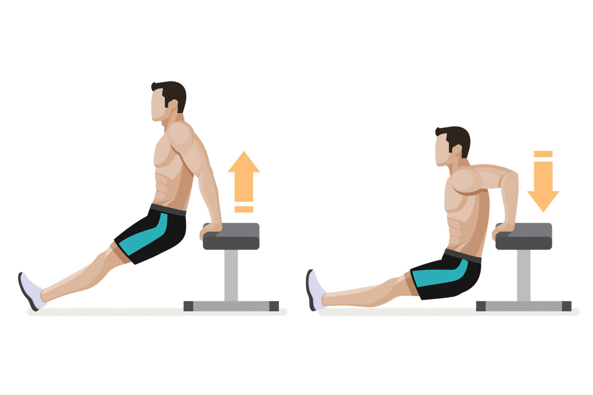 Упражнения для подростков —отжимания на трицепс