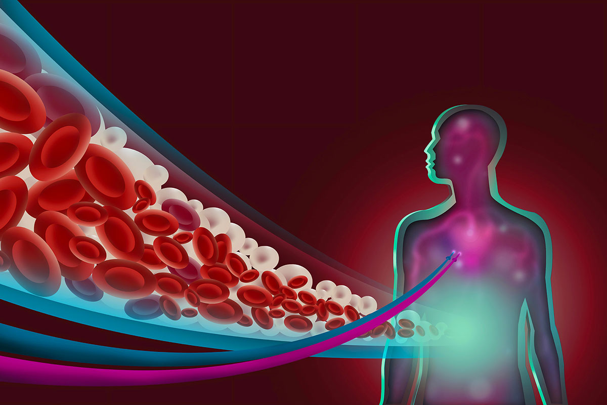 Триглицериды —почему повышаются?