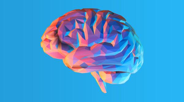 Нейропластичность —что это такое и как развивать?