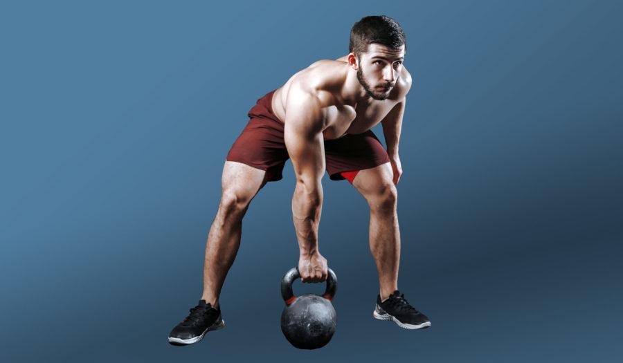 Гид новичка —программа для набора мышечной массы