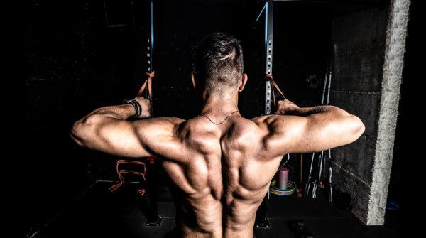 Трапециевидные мышцы и верх спины —как правильно качать?