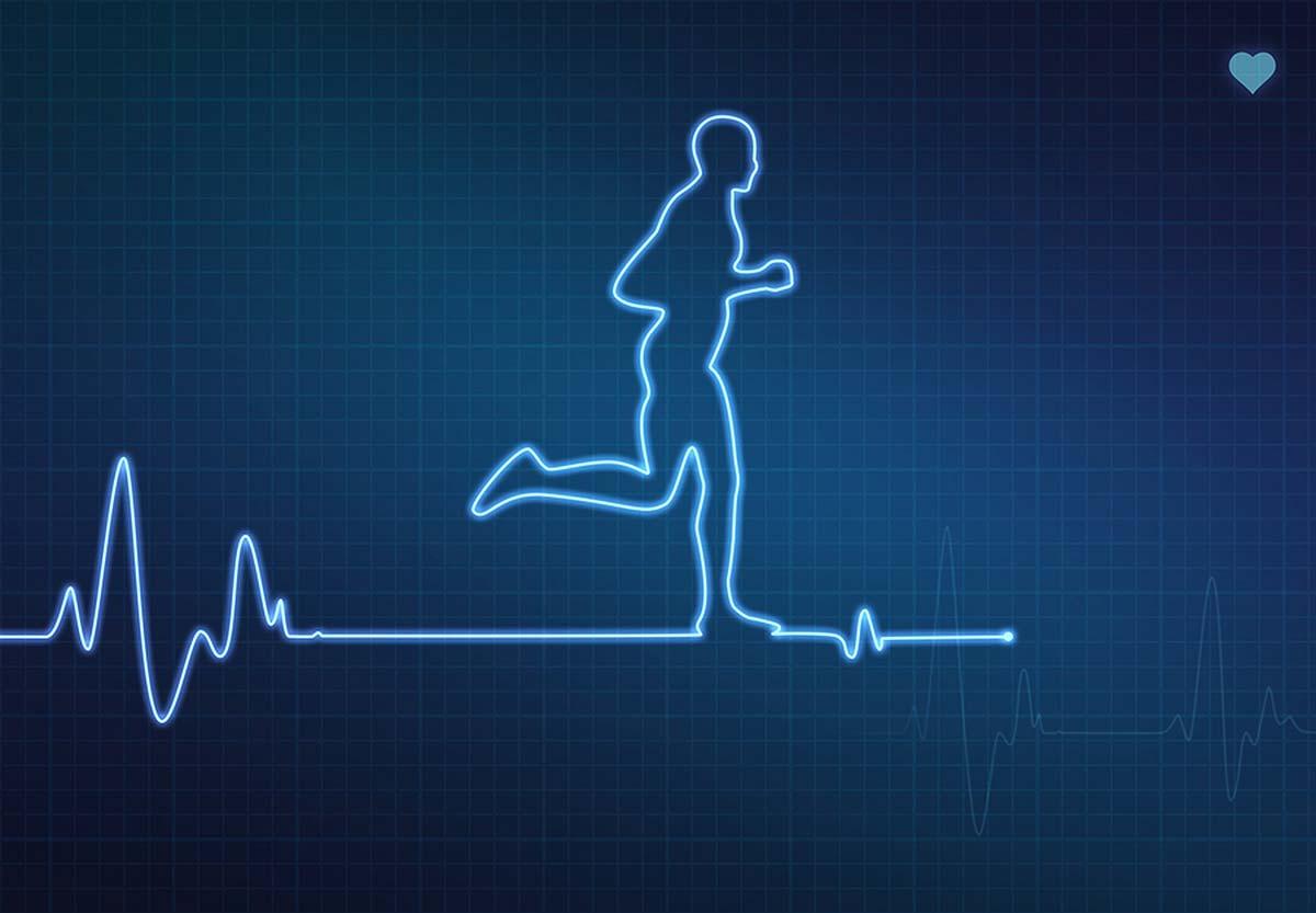 Частота пульса при беге —зоны