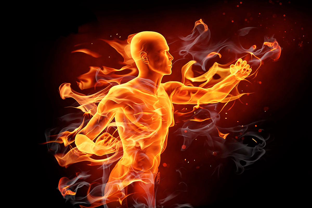 программа тренировок для сжигания жира для мужчин средства недорогие