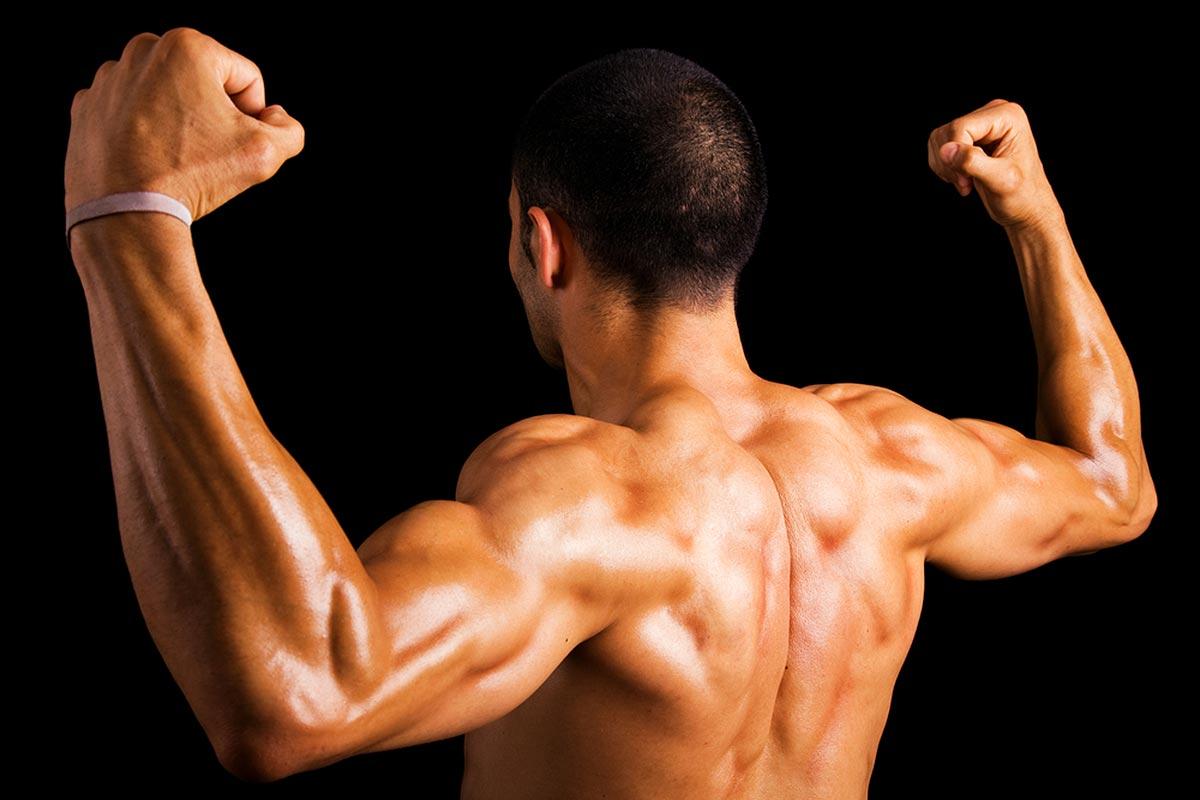 Тренировка спины —программа