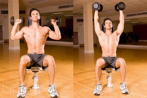 Упражнения для плеч: жим гантелей параллельно сидя