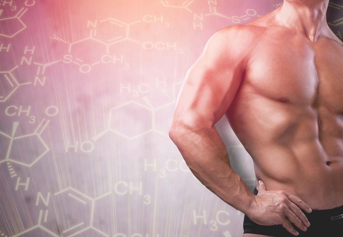 Трибулус —влияние на тестостерон