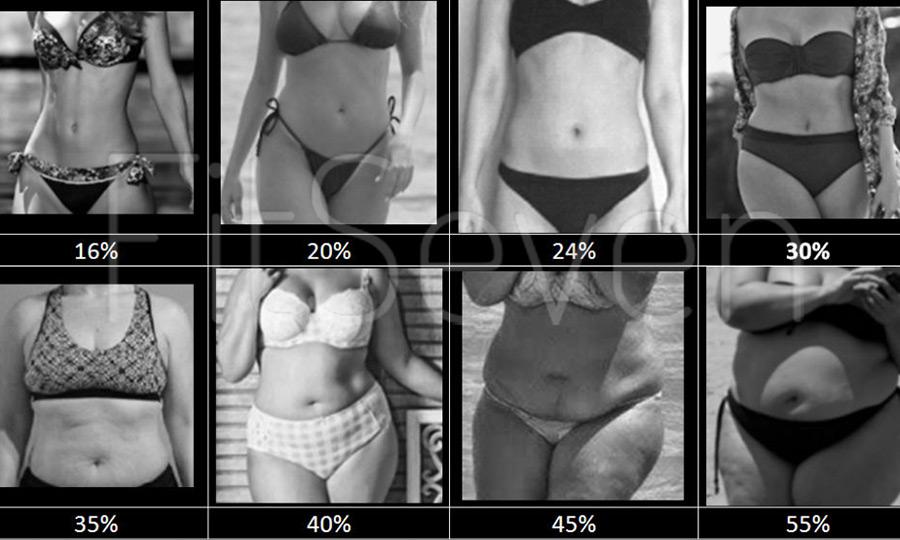 Процент жира в организме - женщины