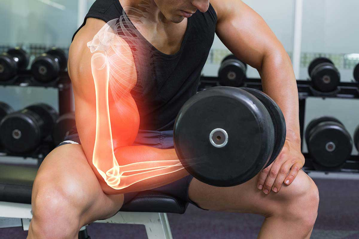 Влияние гликогена на работу мышц