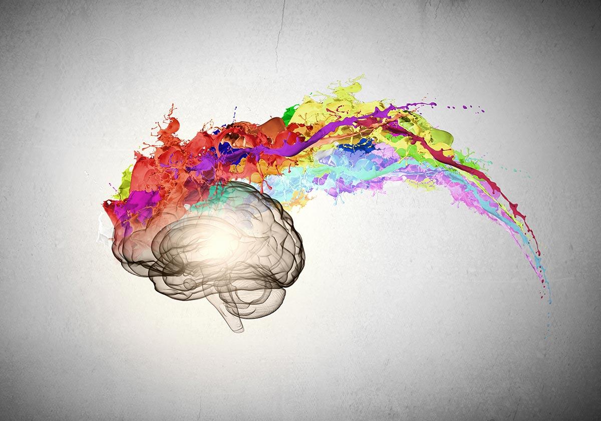 Влияние серотонина на работу мозга